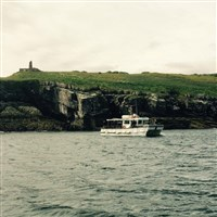 Isle of Anglesey and a cruise to Puffin Island