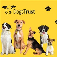 Dogs Trust Home and Broadstone Mill
