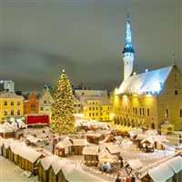 European Christmas Market Experience
