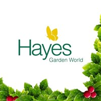 Hayes Garden World and Lakeland Limited