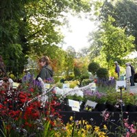 Holker Hall Plant Fair