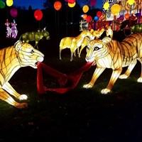 Bath Christmas Markets& Longleat Festival of Light