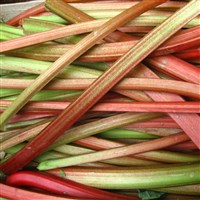 Festival of Food, Drink and Rhubarb at Wakefield