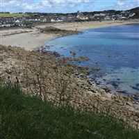 Cornish Gardens & A Taste of the Scilly Isles
