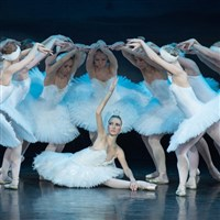 Swan Lake at the Bridgewater Hall or Manchester